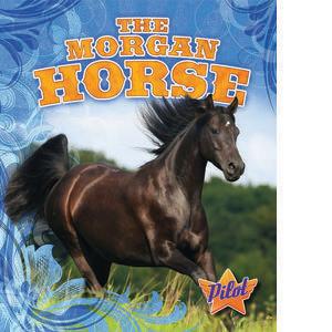Cover: The Morgan Horse