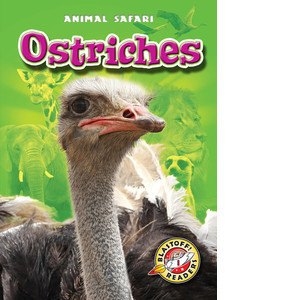 Cover: Ostriches