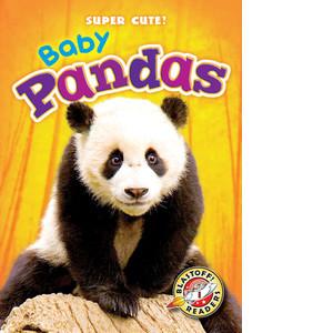 Cover: Baby Pandas