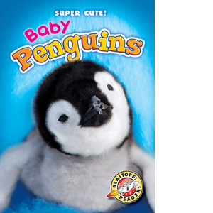 Cover: Baby Penguins
