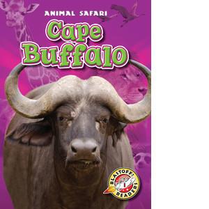 Cover: Cape Buffalo
