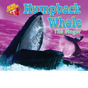 Cover: Humpback Whale: The Singer