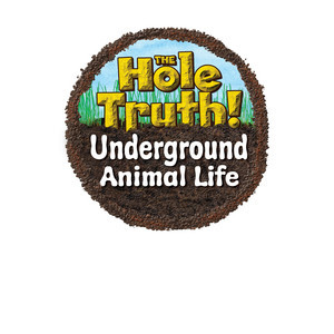 Cover: The Hole Truth! Underground Animal Life