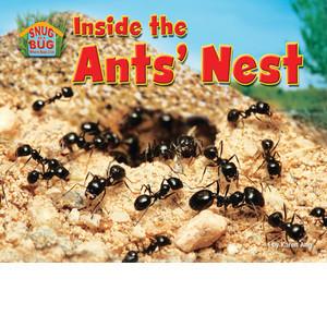 Cover: Inside the Ants' Nest