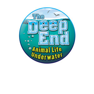 Cover: The Deep End: Animal Life Underwater