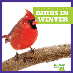 Cover: Birds in Winter