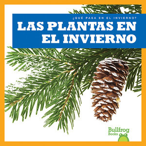 Cover: Las plantas en el invierno (Plants in Winter)