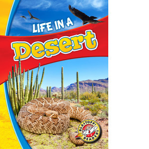 Cover: Life in a Desert