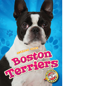 Cover: Boston Terriers
