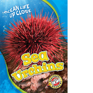 Cover: Sea Urchins