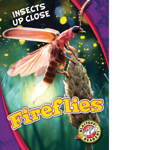 Cover: Fireflies
