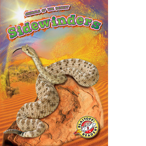 Cover: Sidewinders