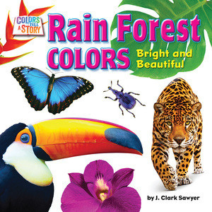 Cover: Rain Forest Colors: Bright and Beautiful