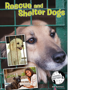 Cover: Rescue and Shelter Dogs