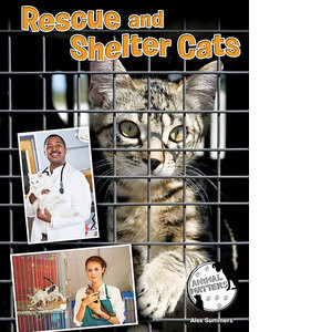 Cover: Rescue and Shelter Cats