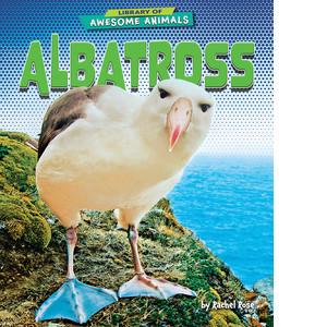 Cover: Albatross