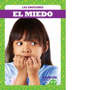 Cover: El miedo (Afraid)