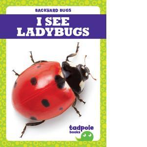 Cover: I See Ladybugs
