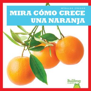 Cover: Mira cómo crece una naranja (Watch an Orange Grow)