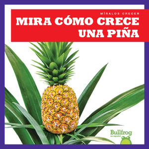 Cover: Mira cómo crece una piña (Watch a Pineapple Grow)
