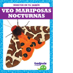 Cover: Veo mariposas nocturnas (I See Moths)
