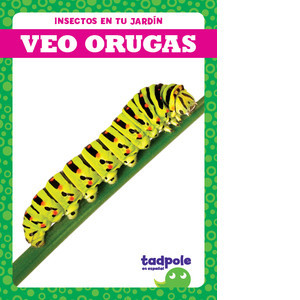 Cover: Veo orugas (I See Caterpillars)