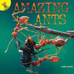 Cover: Amazing Ants