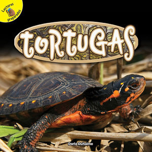 Cover: Tortugas