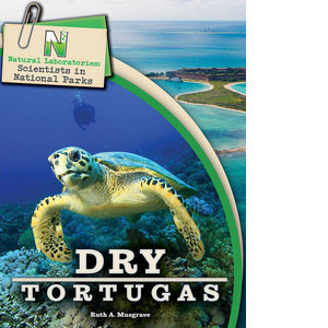 Cover: Dry Tortugas