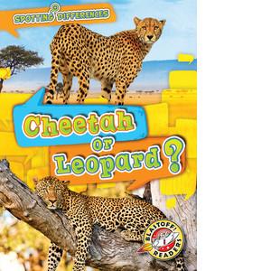 Cover: Cheetah or Leopard?