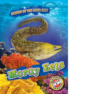 Cover: Moray Eels
