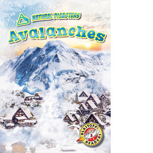 Cover: Avalanches