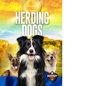 Cover: Dog Groups