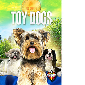 Cover: Toy Dogs
