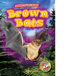 Cover: Brown Bats