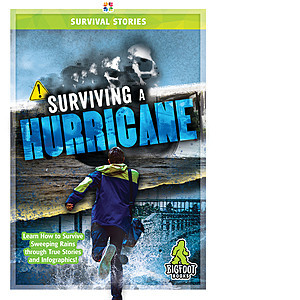 Cover: Surviving a Hurricane