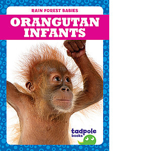 Cover: Orangutan Infants