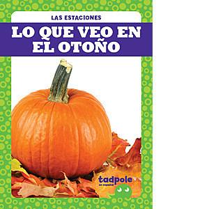 Cover: Lo que veo en el otoño (What I See in Fall)