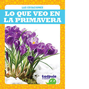 Cover: Lo que veo en la primavera (What I See in Spring)