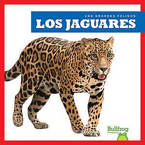 Cover: Los jaguares (Jaguars)