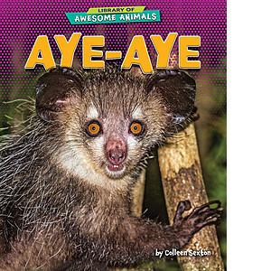 Cover: Aye-Aye