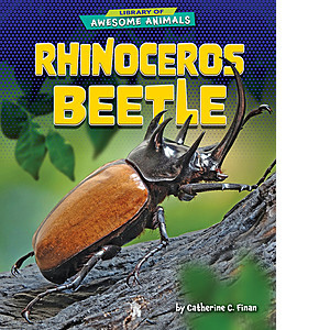 Cover: Rhinoceros Beetle