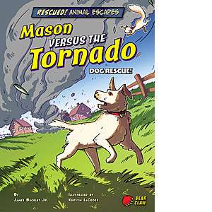 Cover: Mason versus the Tornado