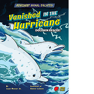 Cover: Vanished in the Hurricane