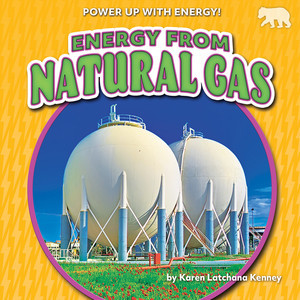 Cover: Energy from Natural Gas