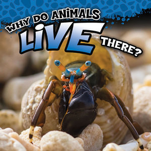Cover: Why Do Animals Live There?