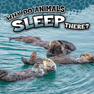 Cover: Why Do Animals Sleep There?