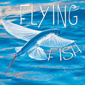Cover: Flying Fish