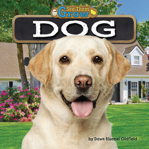 Cover: Dog