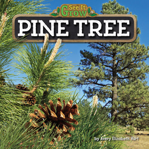 Cover: Pine Tree